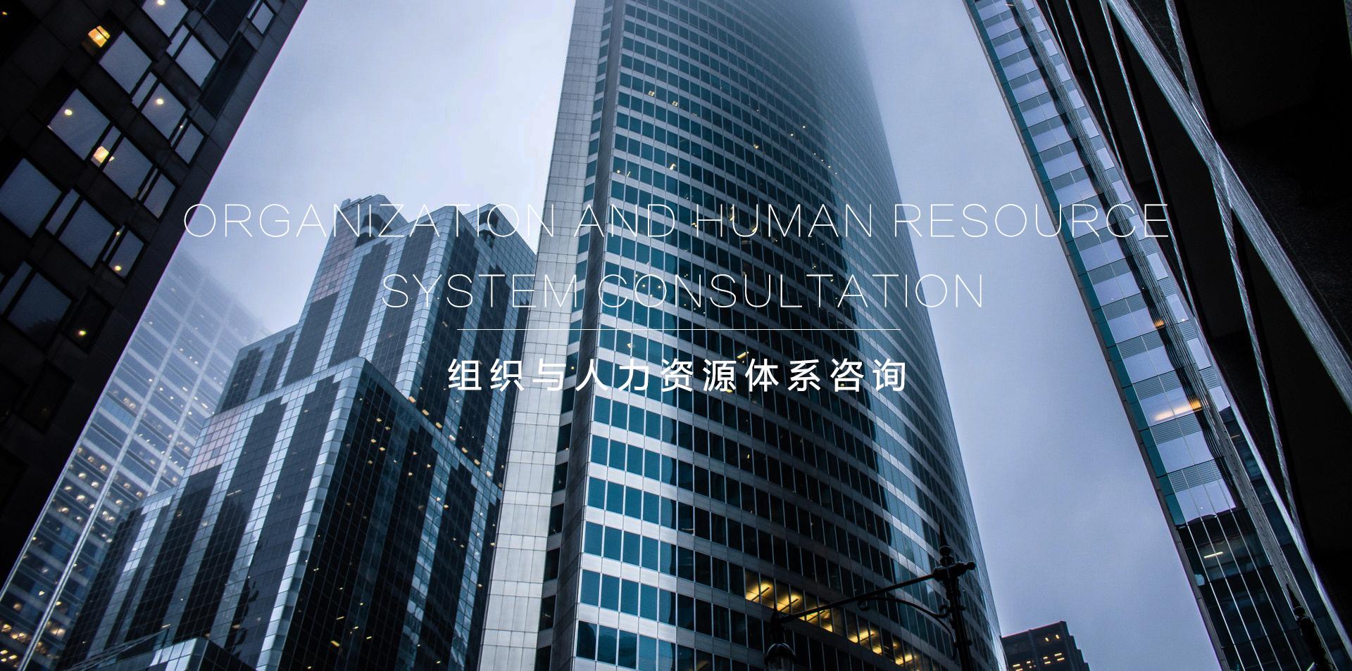 组织创新,人力资本,组织创新与变革